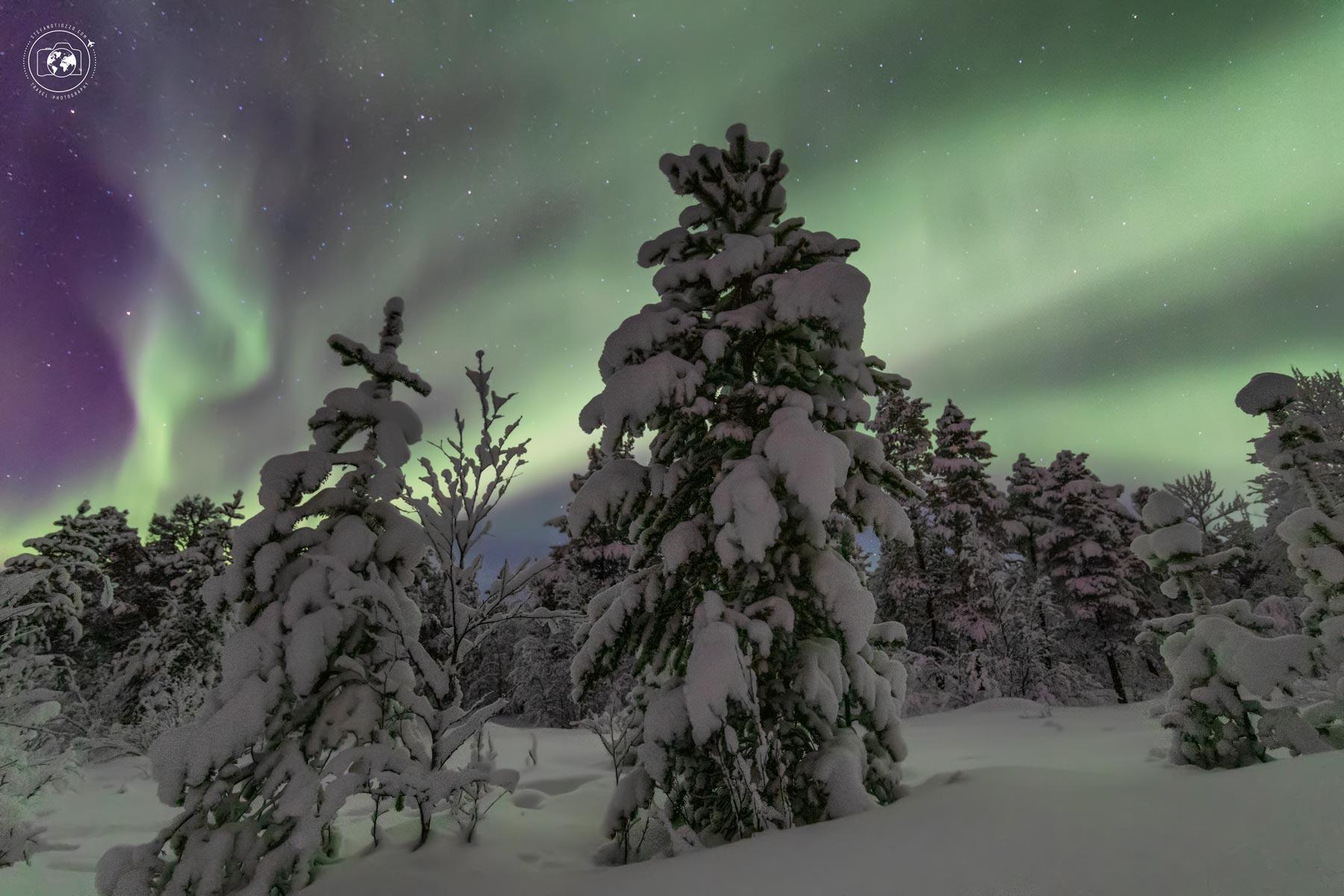 Aurora boreale nell'estrema Lapponia - i colori magici dell'artico