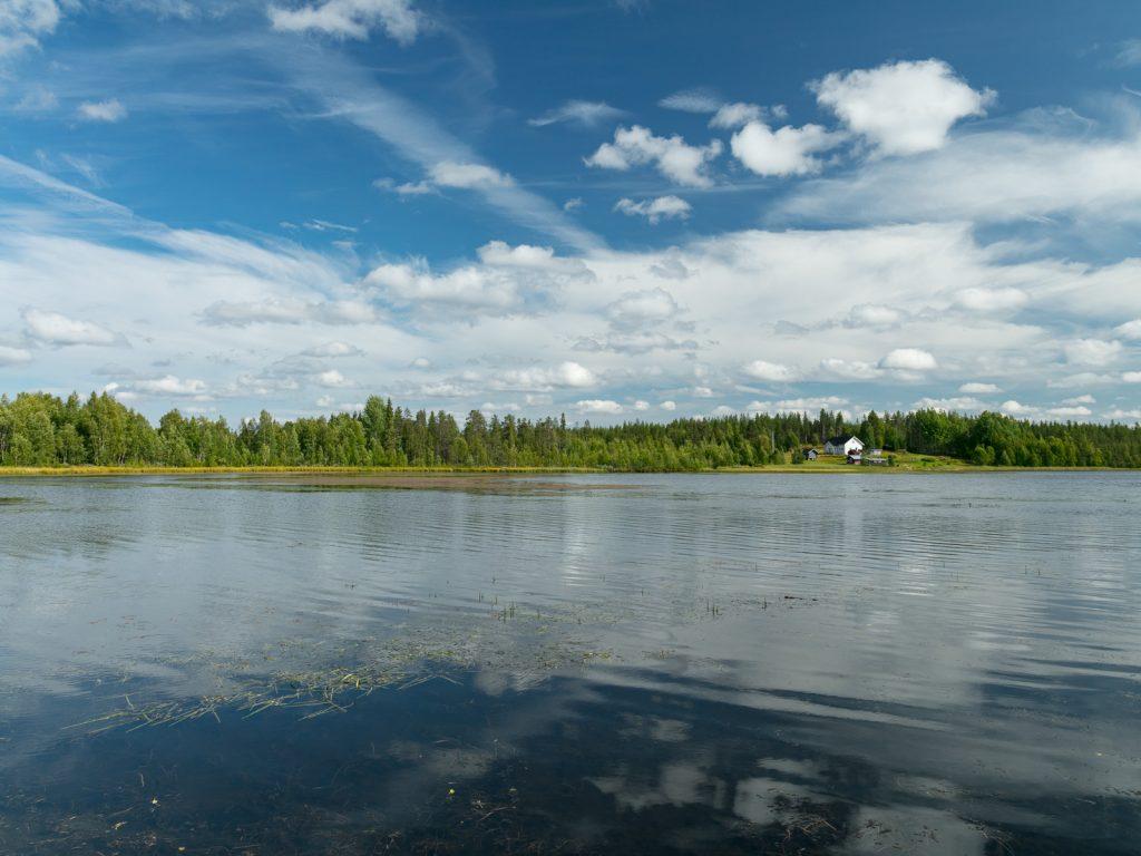 Lapponia_Finlandia_Svezia_Autunno_Foliage (10)