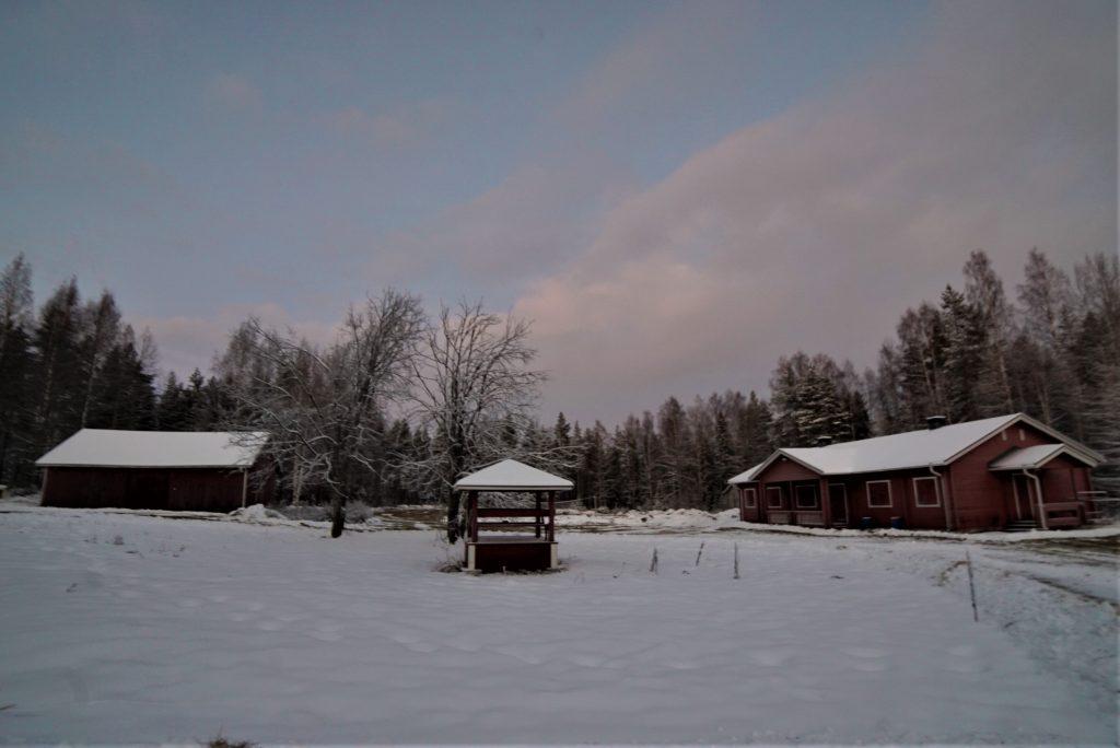 Courtyard early winter